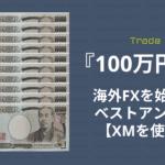 海外FX_100万