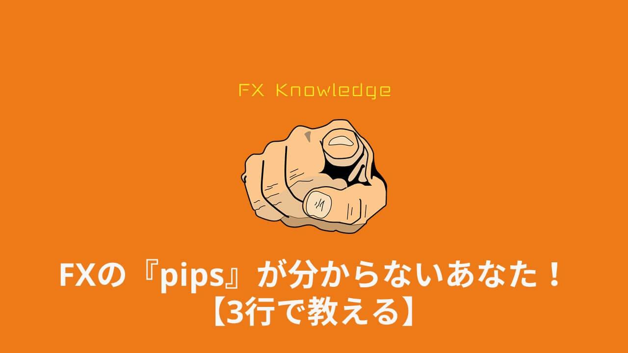 海外FX_pips